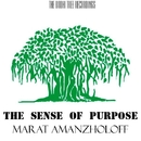 The Sense Of Purpose - Single/Marat Amanzholoff