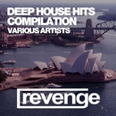 Deep House Hits/DJ Favorite & DJ Kharitonov & Going Crazy & DJ Kristina Mailana & Will Fast & Major Lover & Maxi Lopez & Lykov & Digo & Brayan Bhiggest & Velial & DJ Khationov