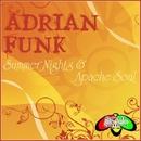 Summer Nights/Adrian Funk