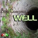 Well/Buzz Compass