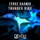 Thunder Bird/Feroz Haamid