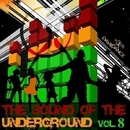 THE SOUND OF THE UNDERGROUND Vol. 8/Andy Pitch & Hakan Dundar & Mauro Cannone & Project 99 & DJ Herby & Mark Fall & Cristian Parisi & Like Post & The Beatfuckers Project & Iwan Boty & Ky Sakamoto & Ben Dover & Massimo Solinas & MMMIII