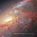 Project STS-31 - Spiralgalaxie/Heinrich Mueller & The Exaltics