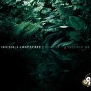 Murder 1/Invisible Landscape
