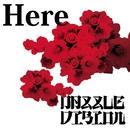 Here/Dazzle Vision