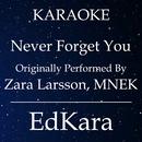 Never Forget You (Originally Performed by Zara Larsson & MNEK) [Karaoke No Guide Melody Version]/EdKara