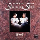 WINK FIRST LIVE Shining Star - Dreamy Concert Tour On 1990 -/WINK