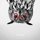 Bird/Cornel