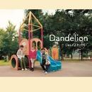 Dandelion/じゃんぐるカンガルー