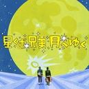 星くず兄弟、月へゆく/野宮真貴 with スターダスト・ブラザーズ