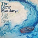 The Wild River/THE BLOW MONKEYS