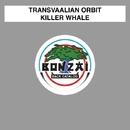 Killer Whale/Transvaalian Orbit