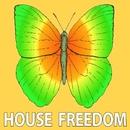 House Drive/Bunny House
