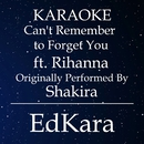 Can't Remember to Forget You (Originally Performed by Shakira feat. Rihanna) [Karaoke No Guide Melody Version]/EdKara