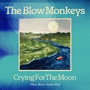 Crying For The Moon (New Moon Radio Mix)/THE BLOW MONKEYS