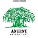 Experement/Antent