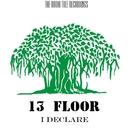 I Declare/13 Floor