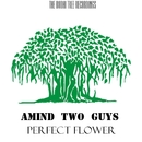 Perfect Flower/Amind Two Guys