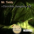 Terrible Jungles/Mr. Teddy