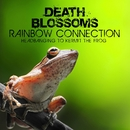 Rainbow Connection – Headbanging to Kermit The Frog/Death Blossoms