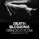 Orinoco Flow – Headbanging to Enya/Death Blossoms
