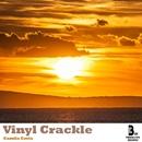 Vinyl Crackle/Camila Coria