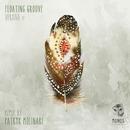 Verana EP/Floating Groove