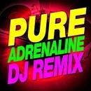 Pure Adrenaline! DJ Remixed/Ibiza Dance Party