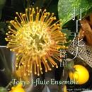 打上花火 (「打上花火、下から見るか?横から見るか?」より)shinobue version/Tokyo J-flute Ensemble