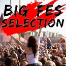 BIG FES SELECTION/Various Artists