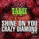 SHINE ON YOU CRAZY DIAMOND (PART I-V)/TARUZ