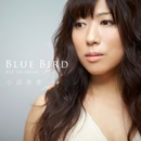 Blue Bird  Fly to shine/小沼寿恵