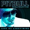 Give Me Everything/Pitbull feat. Ne-Yo, Afrojack & Nayer