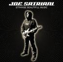 Strange Beautiful Music/JOE SATRIANI