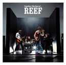 Give Me Your Love/Reef
