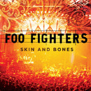 Skin And Bones/Foo Fighters