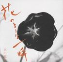 花のような一瞬/早川 義夫