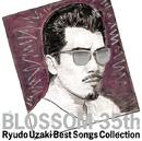 BLOSSOM-35th ~宇崎竜童ベスト・ソングス・コレクション/宇崎 竜童
