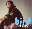 フラッシュ/bird