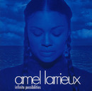 Infinite Possibilities/Amel Larrieux