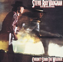 COULDN'T STAND THE WEATHER/Stevie Ray Vaughan & Double Trouble