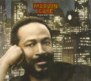 Marvin Gaye '50'(International Version) / Marvin Gaye