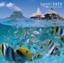 南国音楽  Resort Music Series/GONTITI
