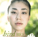 BREATH/bird