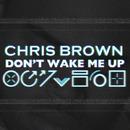 Don't Wake Me Up (Panic City Remix)/Chris Brown