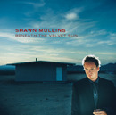 Beneath The Velvet Sun/Shawn Mullins