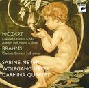 Mozart:Clarinet Quintet K.581,Allegro F major, K.580b/Brahms:Clarinet Quintet in B minor, Op.115/Sabine Meyer & Wolfgang Meyer