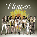 太陽と向日葵/Flower