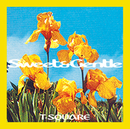 SWEET and GENTLE/THE SQUARE/T-スクェア