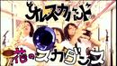 花のスカダンス/オレスカバンド